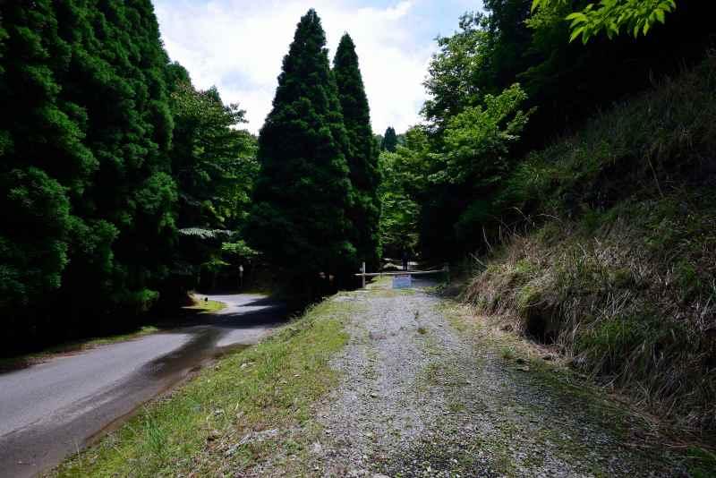 鷹ノ巣山 (35)