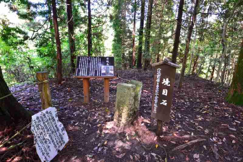 鷹ノ巣山 (40)