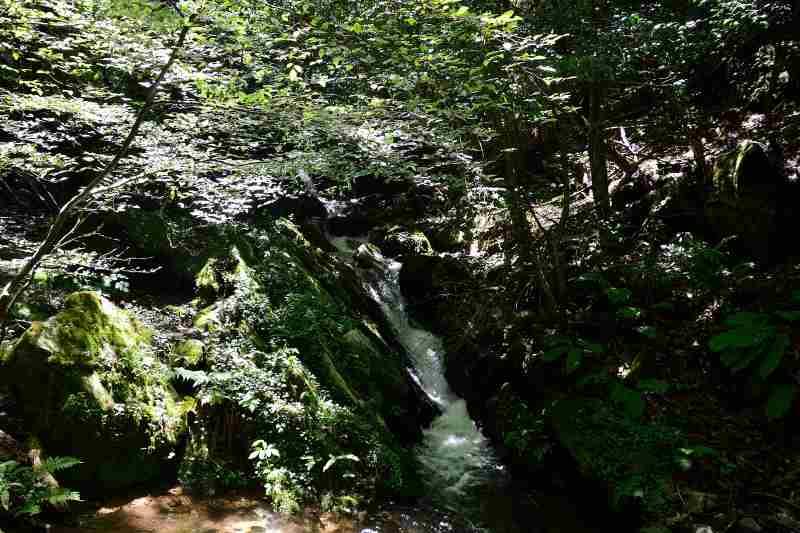 井原山 (2)