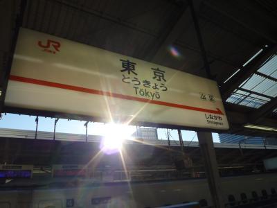 2015.1.9東京
