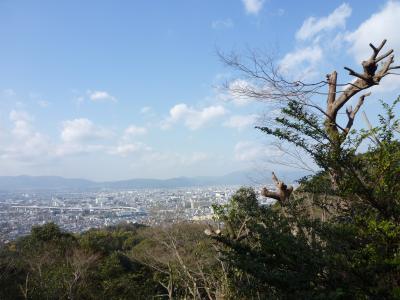 2015.1.11伏見稲荷-10