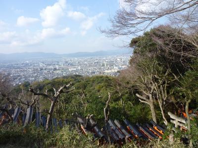 2015.1.11伏見稲荷-11