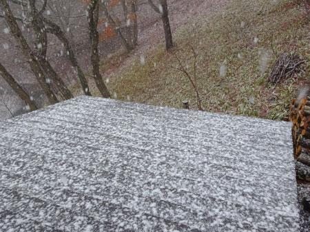 雨、雪、雨・・・1