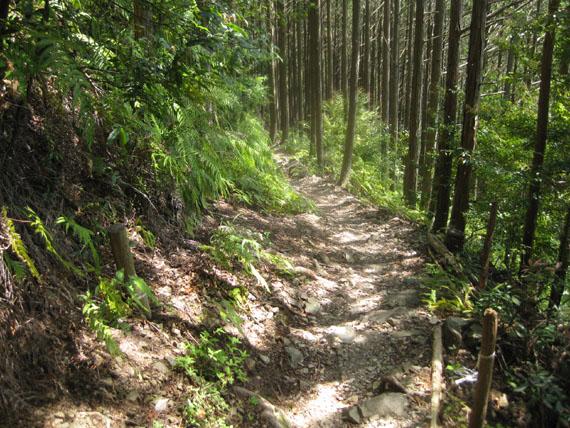 熊野古道・ツヅラト峠7-02