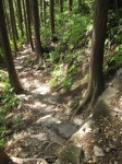 熊野古道・ツヅラト峠7-05
