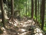 熊野古道・ツヅラト峠7-04
