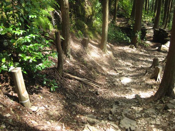 熊野古道・ツヅラト峠7-08