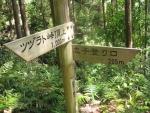 熊野古道・ツヅラト峠7-15