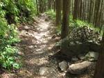 熊野古道・ツヅラト峠7-12