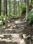 熊野古道・ツヅラト峠7-14