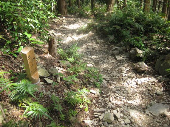 熊野古道・ツヅラト峠7-16