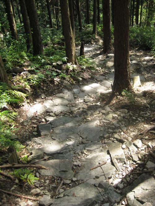 熊野古道・ツヅラト峠7-18