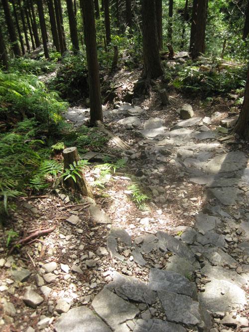 熊野古道・ツヅラト峠7-19