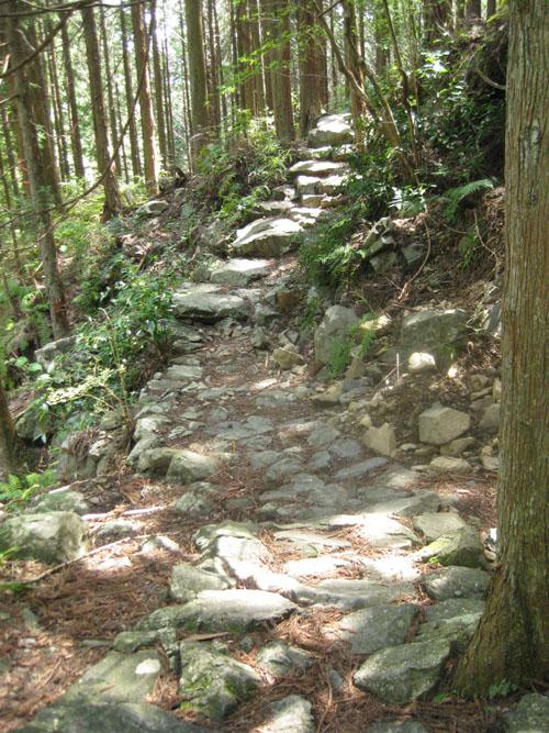熊野古道・ツヅラト峠7-24