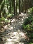 熊野古道・ツヅラト峠8-04