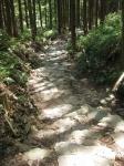 熊野古道・ツヅラト峠8-03
