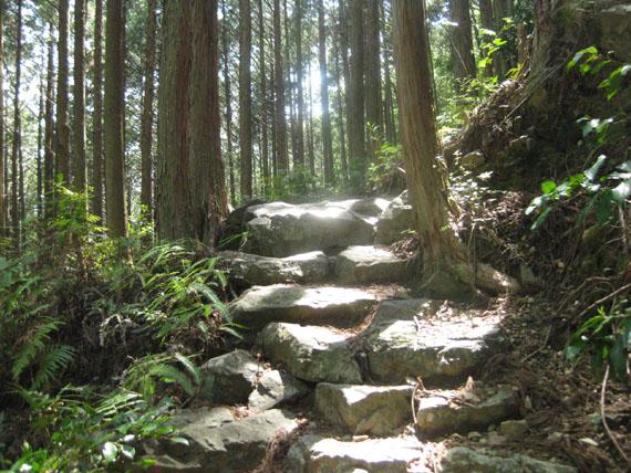 熊野古道・ツヅラト峠8-01