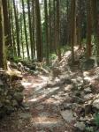 熊野古道・ツヅラト峠8-05