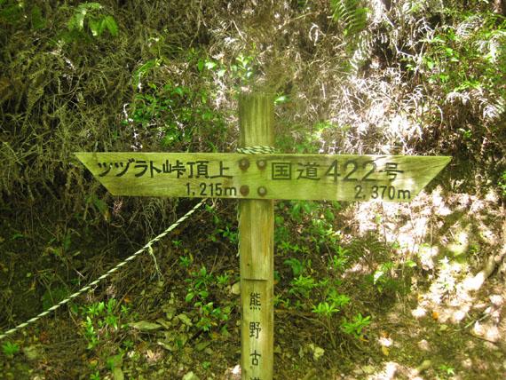 熊野古道・ツヅラト峠8-19