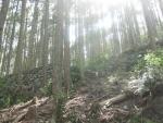 熊野古道・ツヅラト峠9-05