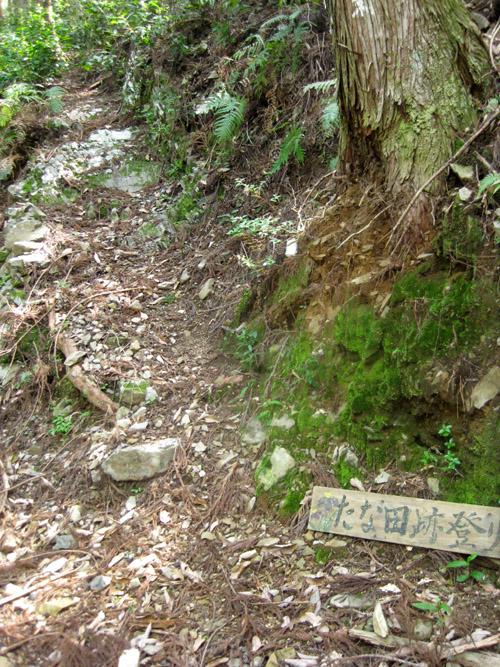 熊野古道・ツヅラト峠9-03