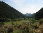 熊野古道・ツヅラト峠9-10