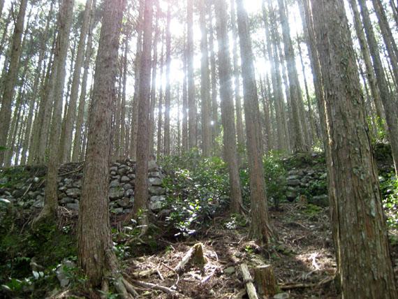 熊野古道・ツヅラト峠9-06