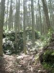 熊野古道・ツヅラト峠9-07