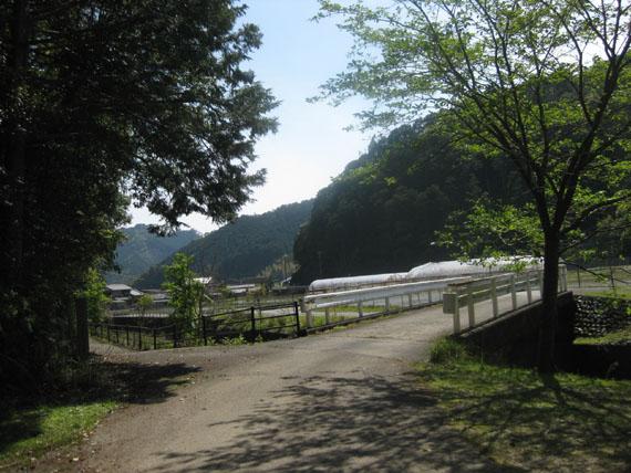 熊野古道・ツヅラト峠9-16