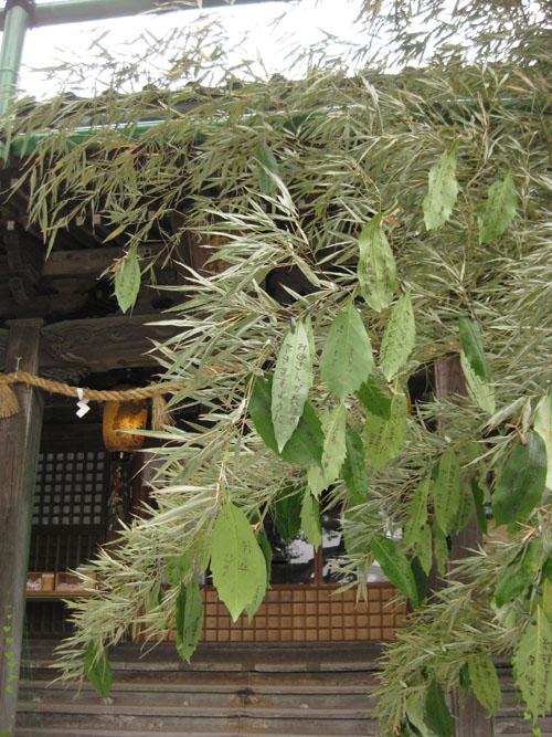 石浦神社-27