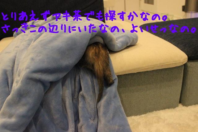 JxYZpwApg3mQxJ_1420536791_1420536876.jpg