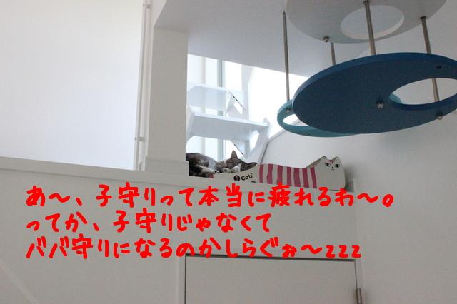 Q_lrpDdozFer_Bm1432644080_1432644157.jpg