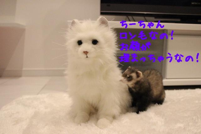 V2KQAopxGw_DDPt1430052142_1430052205.jpg
