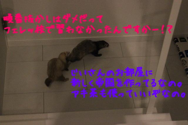_9FKNXZebY4cMSS1432254718_1432254928.jpg