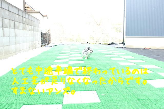 iU4IwyvSKOmEelE1419946561_1419946657.jpg