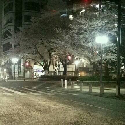 夜桜おいち