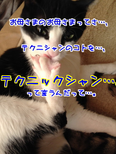 1GghtxLV6FRLxFt1422279809_1422280100.jpg