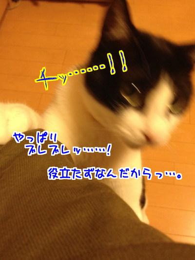 6w5dauoHLwydBdD1429521621_1429521902.jpg