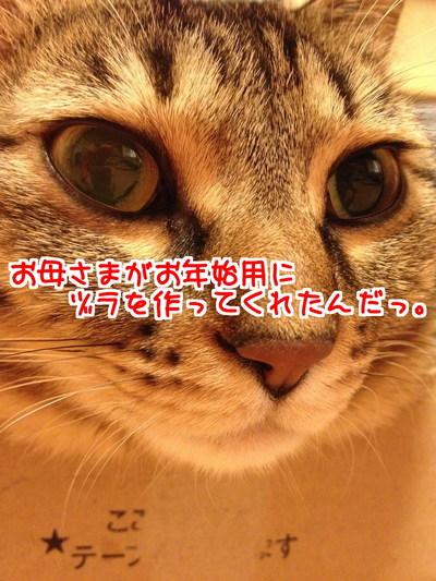 KlEfsKQExBWY11q1419686807_1419686922.jpg