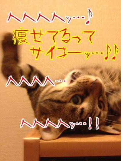 YuVBbPShCucc6Vg1432084340_1432085073.jpg