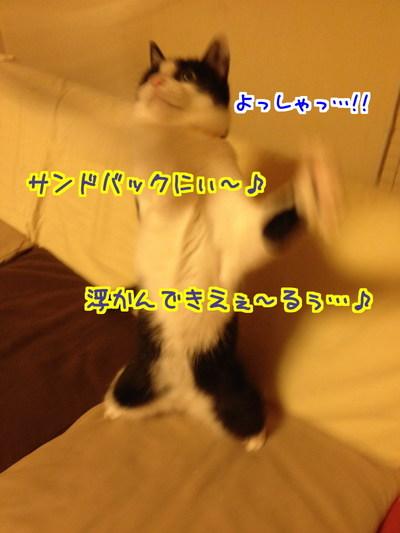 o5xxDJ1tqA8XTwG1432300111_1432300455.jpg