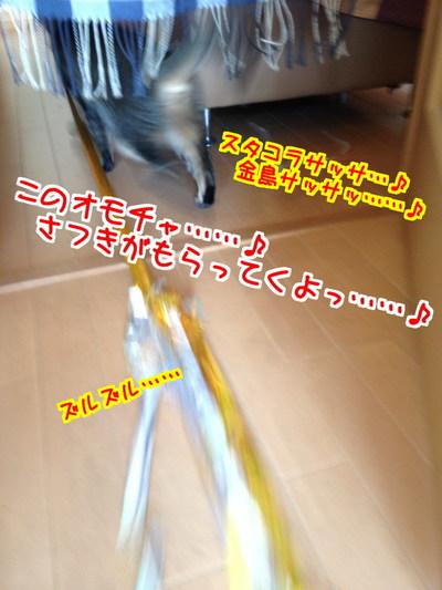 quSQFC7xcl2jJ_F1430361087_1430361438.jpg