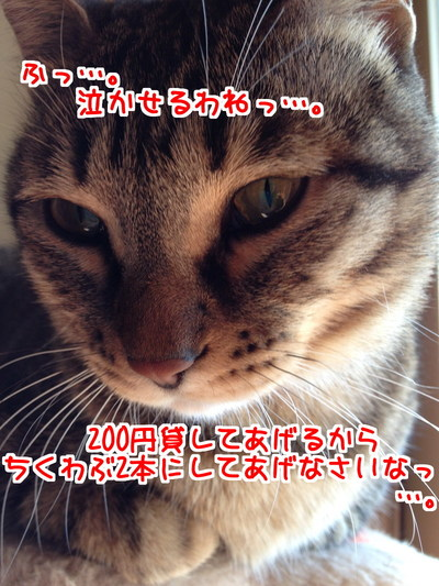 tTDEcXRC3bx3Uuo1419260812_1419260967.jpg