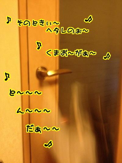 wj6PH_ybW1mLKmh1429519350_1429519823.jpg