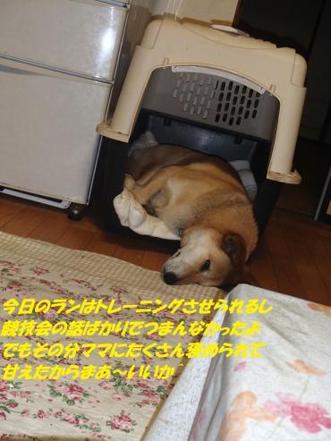 P5220036_convert_20150523093834.jpg