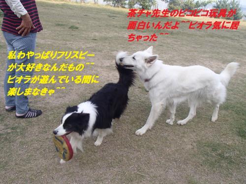 P5270097_convert_20150528083958.jpg
