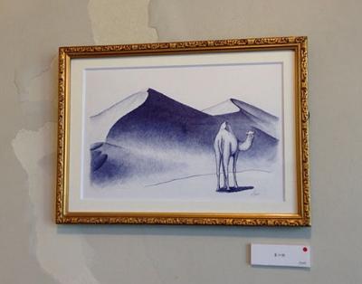 209駱駝