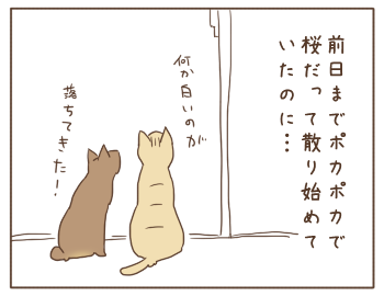 150402-03.png