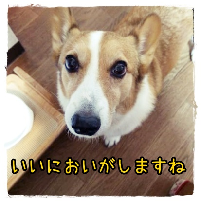 gochisoukure.jpg