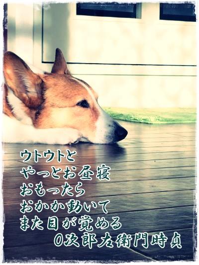 haikujiro.jpg